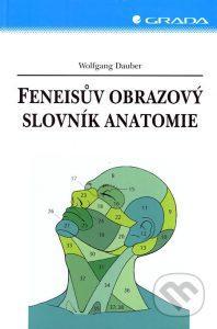 feneisuv atlas anatomie medicina