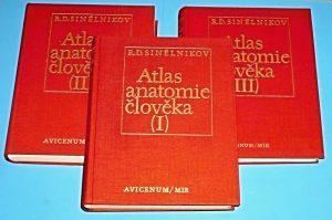 Sinelnikov atlas anatomia medicina