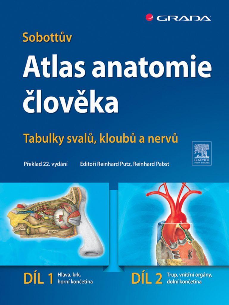 sobotta anatomicky atlas medicina