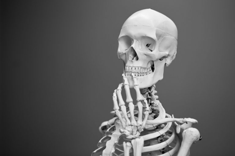 anatomia medicina skuska ucebnica