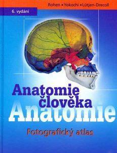 rohen yokoshi anatomie atlas medicina