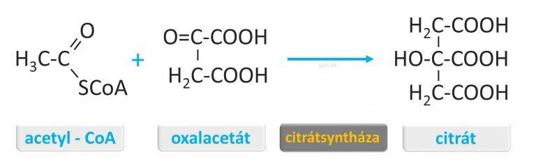 citrát