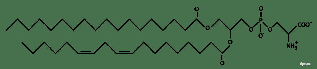 fosfatidylserín