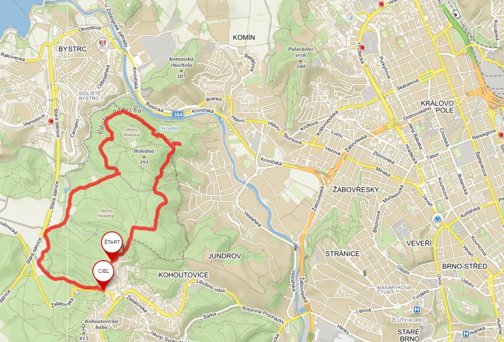 Brno obora Holedna mapa
